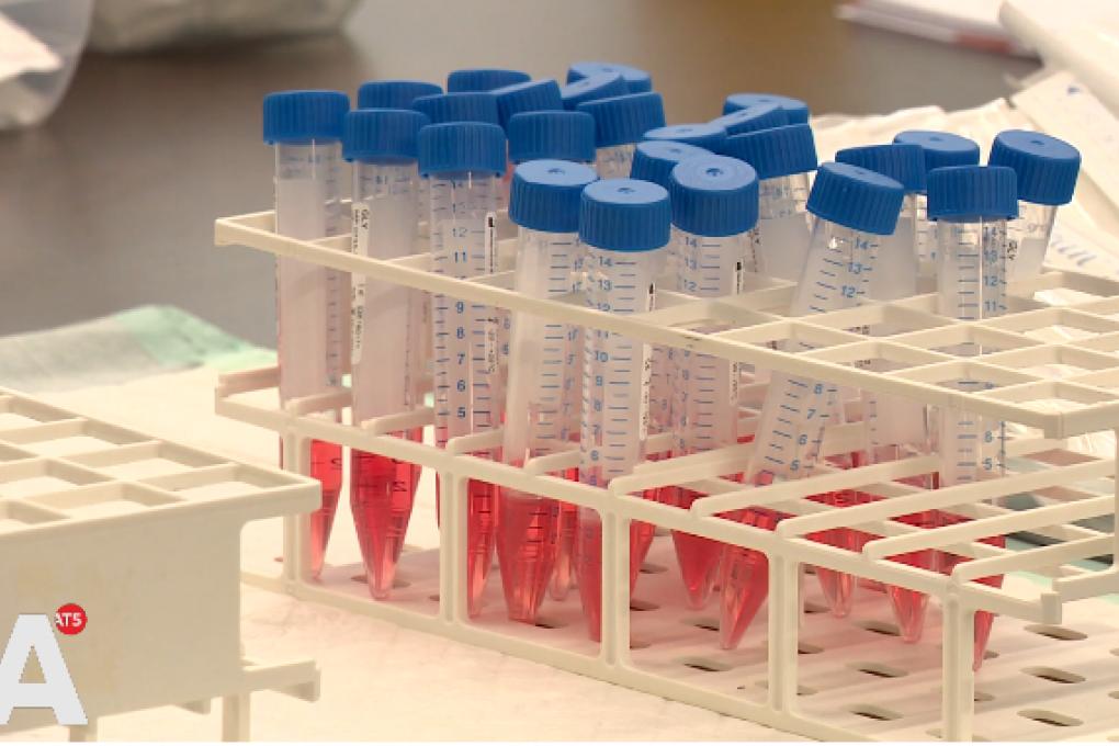 AT5 nieuws: Zorginstelling Cordaan druk met voorbereiding coronavaccinatie