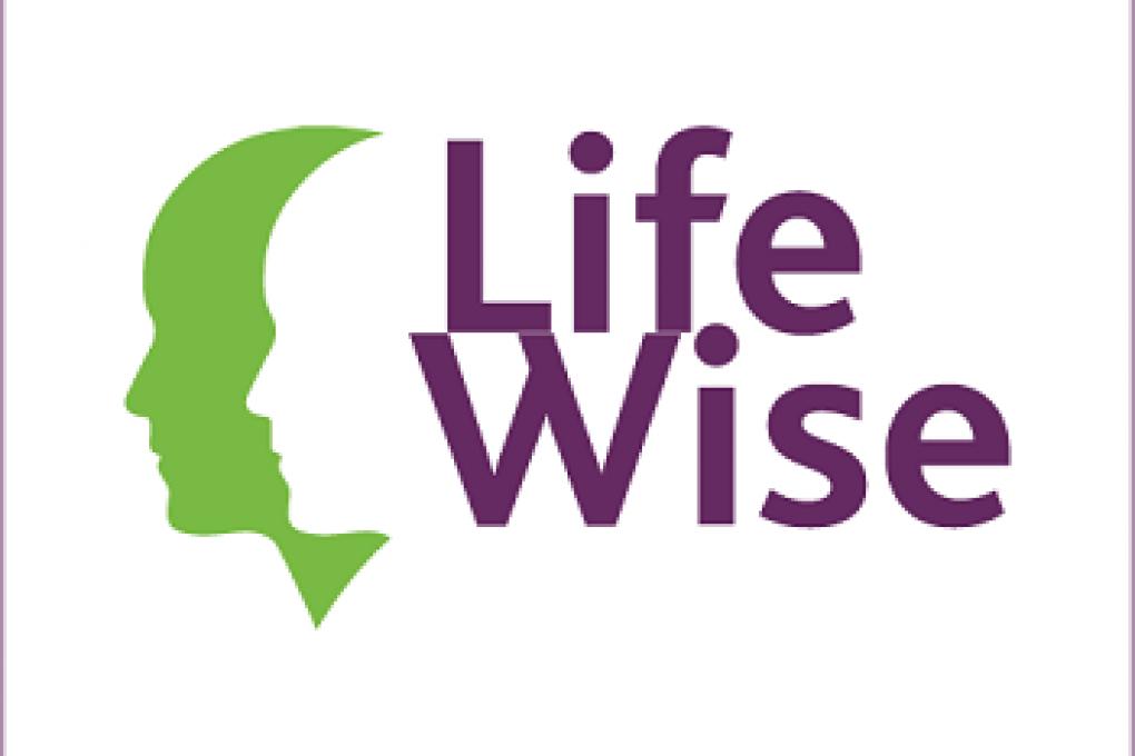 Na LifeWise nu ook JobWise: onderzoek naar werk voor mensen met een LVB+