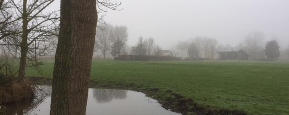 Wintertheetuin Klarenbeek: Wegens succes elke laatste zondag van de maand geopend!