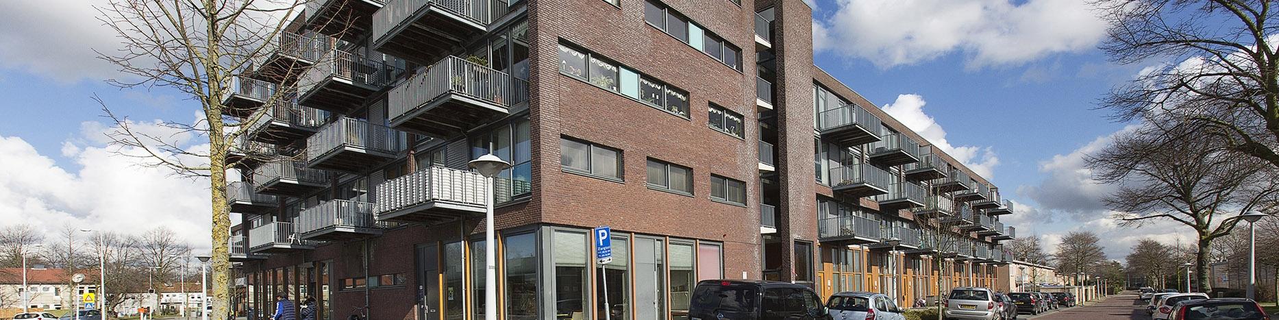 Mandarijnenstraat